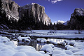 This early morning shot of El Capitan was taken the day after a fresh snow, and yes it was cold. Yosemite, CA 'Nikon F100 35mm SLR' (Click for larger view)