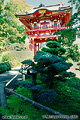 A second traditional Japanese style structure at the 'Japanese Tea Garden' located in Golden Gate Park. San Francisco, CA. 'Nikon F100 35mm SLR' (Click for larger view)