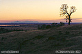 This sunset view is from a point just south of Chico looking toward the southwest. The mountains in the background are the Sutter Buttes. Near Chico, CA. 'Nikon F100 35mm SLR' (Click for larger view)