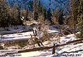 Another morning scene in Yosemite valley. As you can see this image was taken facing the southeast with the long shadows of the early morning sun falling on the snow. 'Nikon F100 35mm SLR' (Click for larger view)